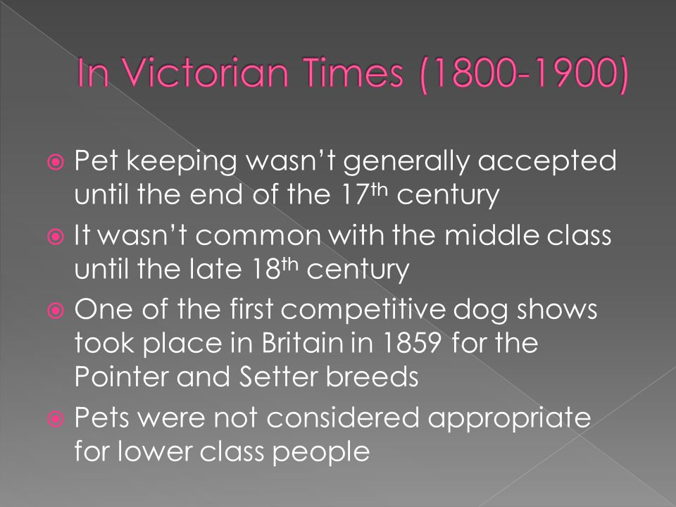 In Victorian Times (1800-1900) Pet keeping wasn't generally accepted until the end of the 17th century.