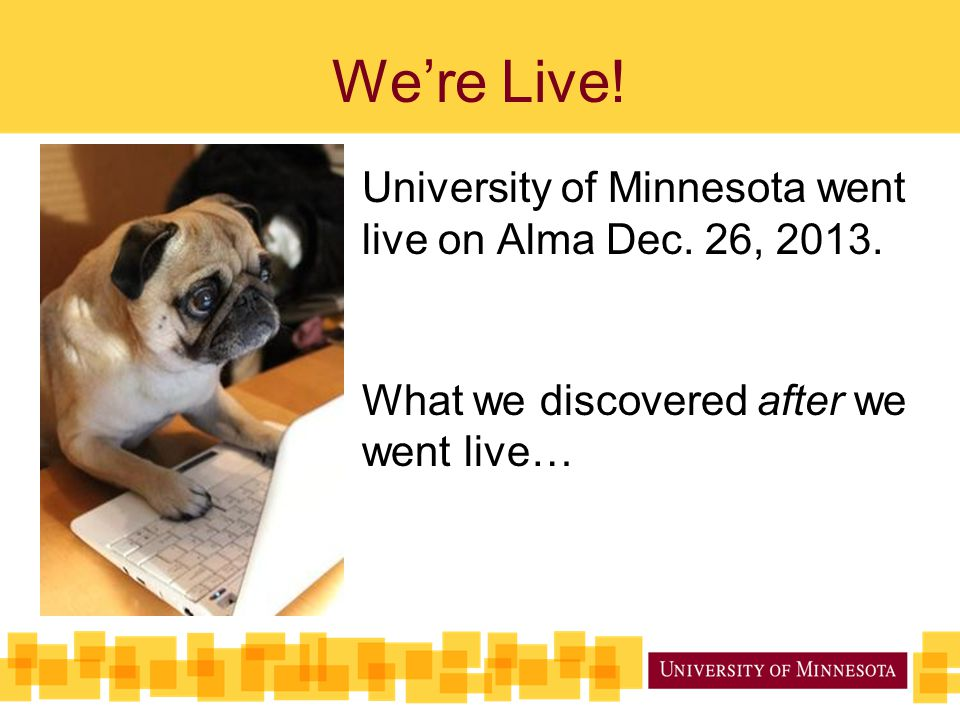 We're Live! University of Minnesota went live on Alma Dec. 26, 2013.