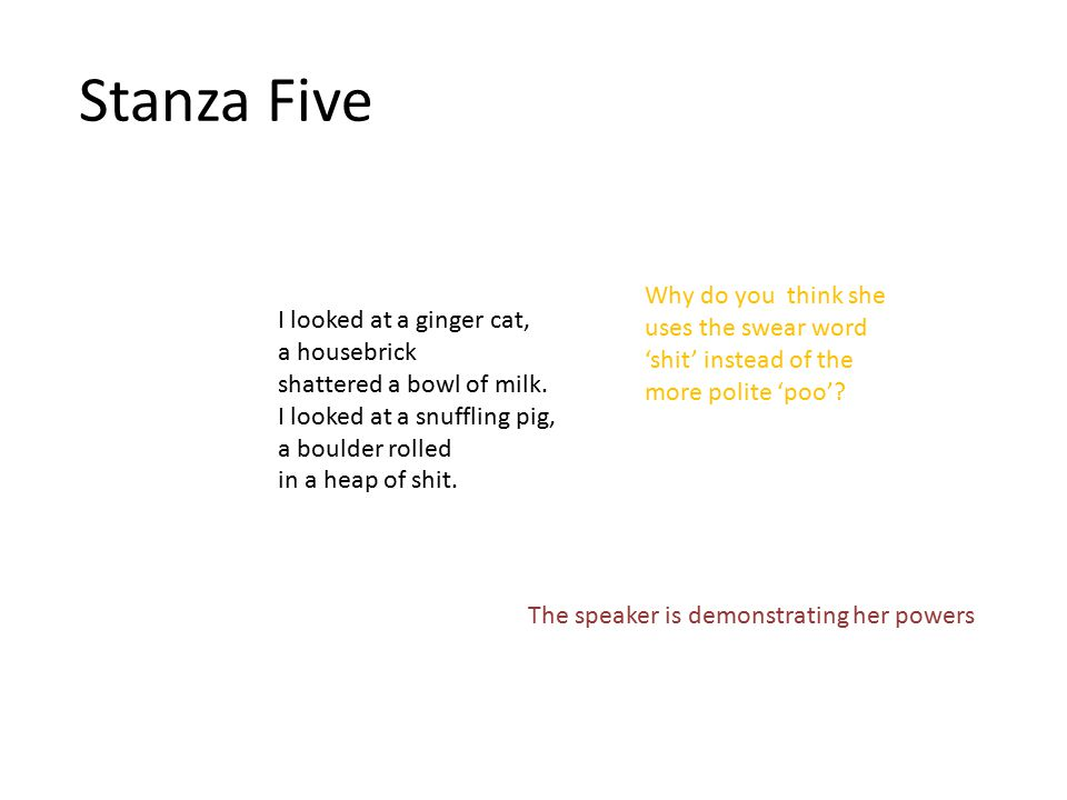 Stanza Five Why do you think she uses the swear word 'shit' instead of the more polite 'poo' I looked at a ginger cat,