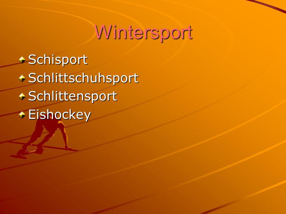 Wintersport Schisport Schlittschuhsport Schlittensport Eishockey