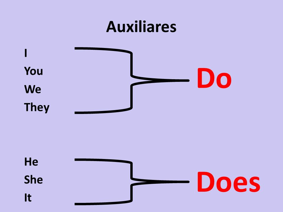 Auxiliares I You We They He She It Do Does