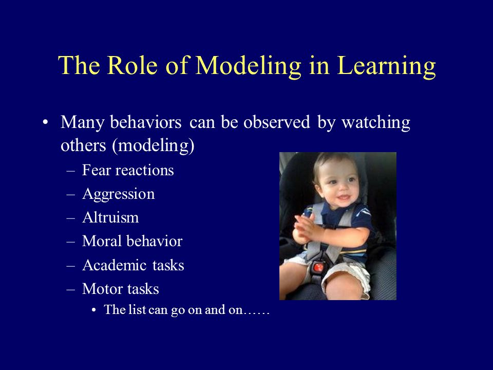 The Role of Modeling in Learning