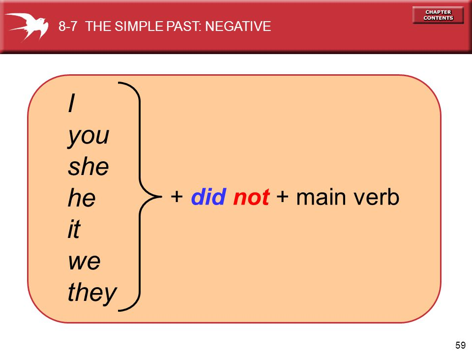 I you she he it we they + did not + main verb