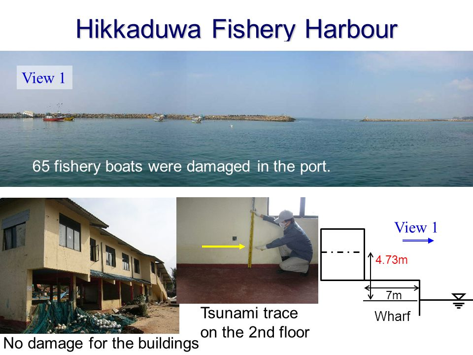 Hikkaduwa Fishery Harbour