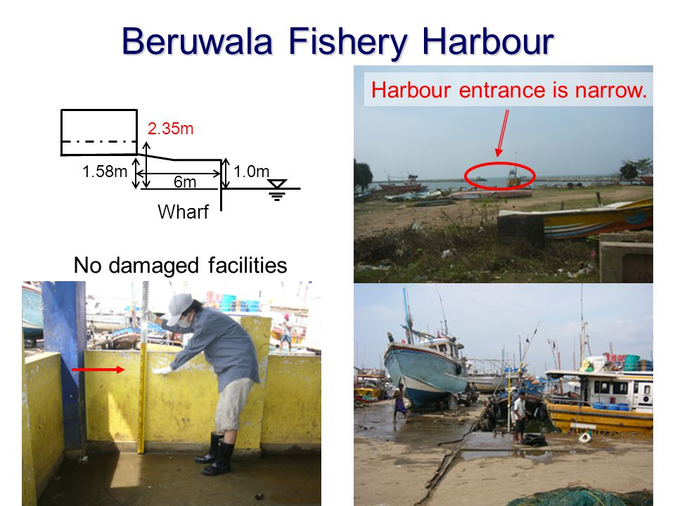 Beruwala Fishery Harbour