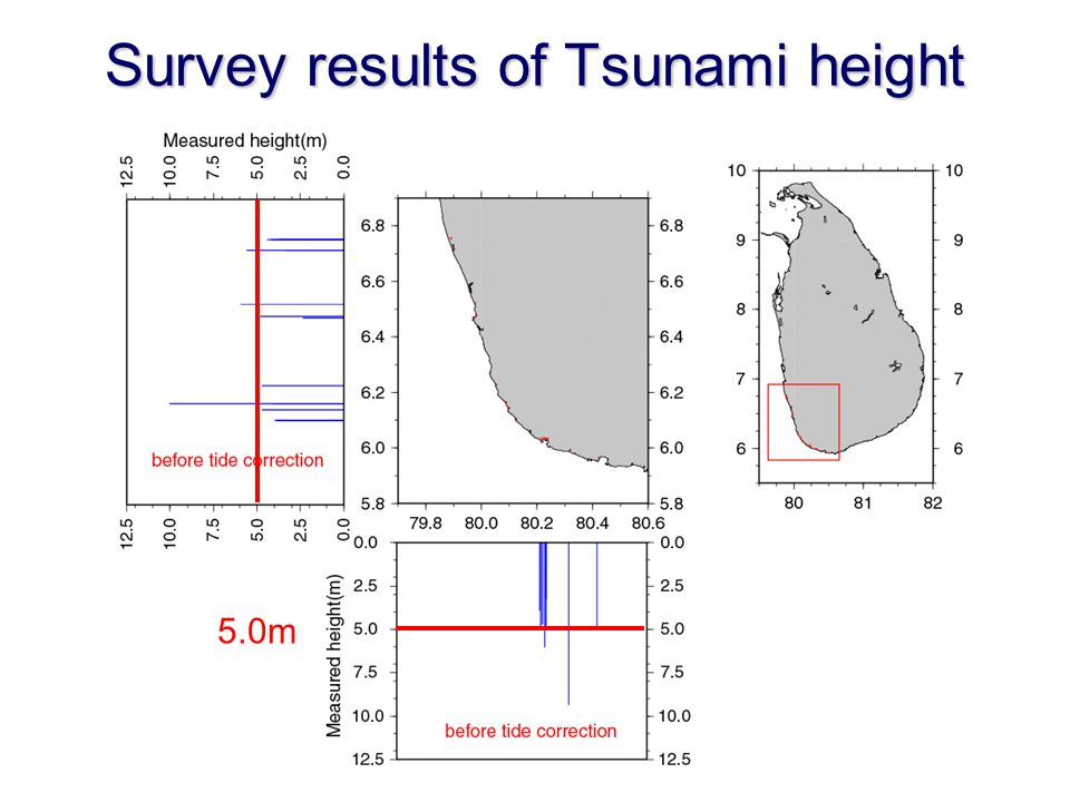 Survey results of Tsunami height