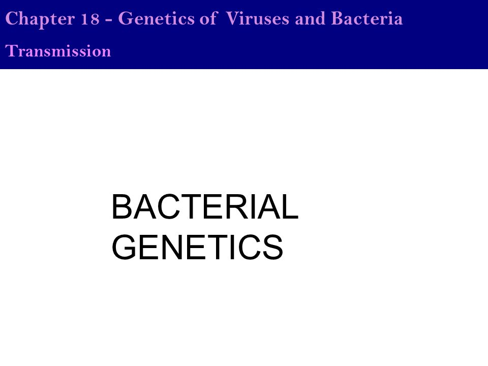 BACTERIAL GENETICS Chapter 18 - Genetics of Viruses and Bacteria