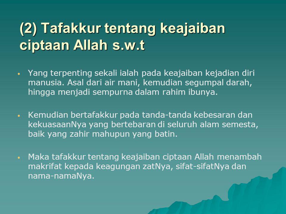 (2) Tafakkur tentang keajaiban ciptaan Allah s.w.t