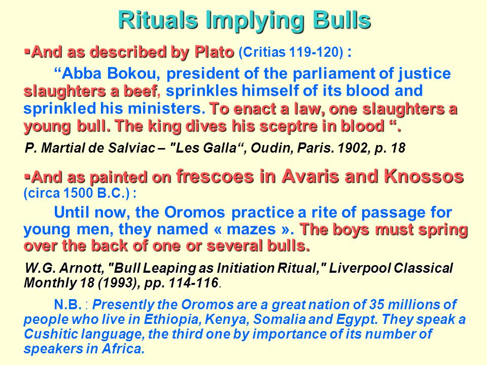Rituals Implying Bulls
