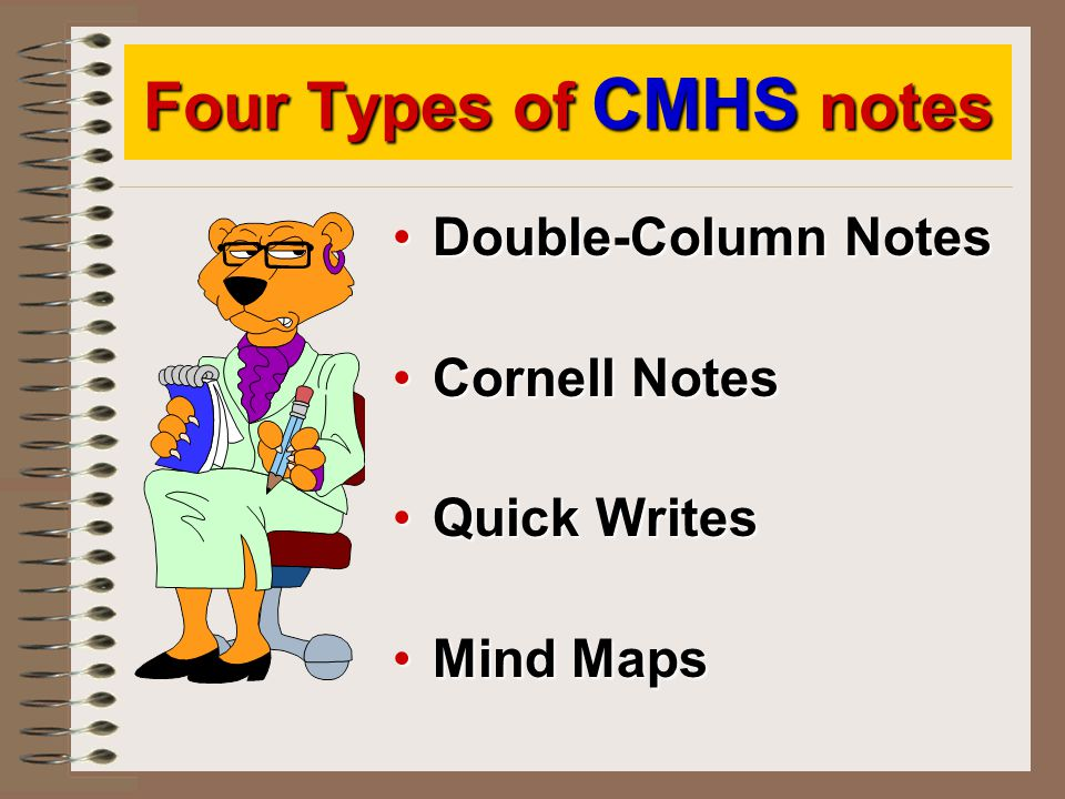 Four Types of CMHS notes