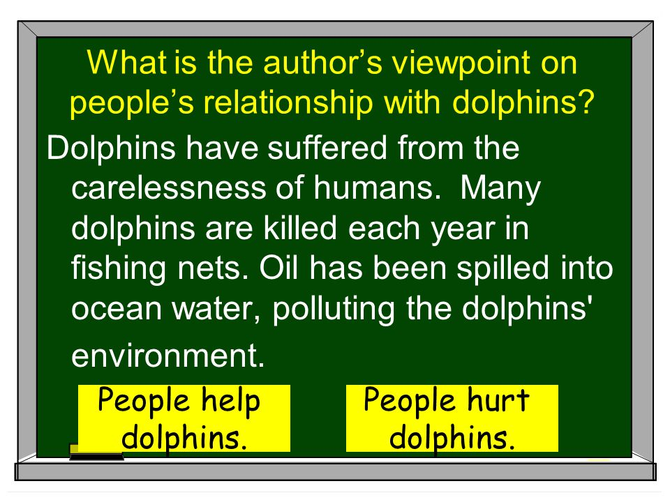 What is the author's viewpoint on people's relationship with dolphins