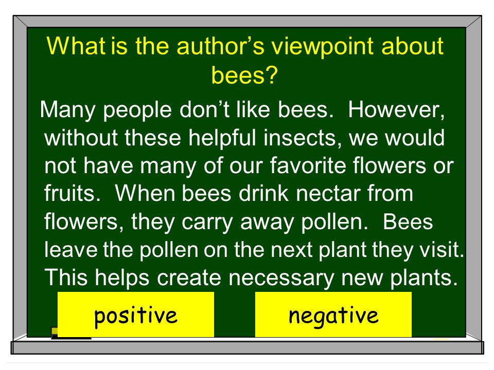What is the author's viewpoint about bees