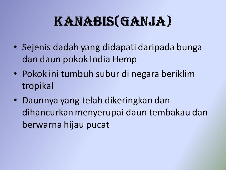 Kanabis(Ganja) Sejenis dadah yang didapati daripada bunga dan daun pokok India Hemp. Pokok ini tumbuh subur di negara beriklim tropikal.