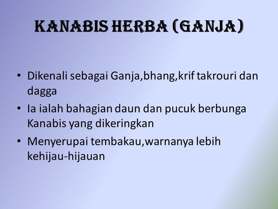 Kanabis Herba (Ganja) Dikenali sebagai Ganja,bhang,krif takrouri dan dagga. Ia ialah bahagian daun dan pucuk berbunga Kanabis yang dikeringkan.