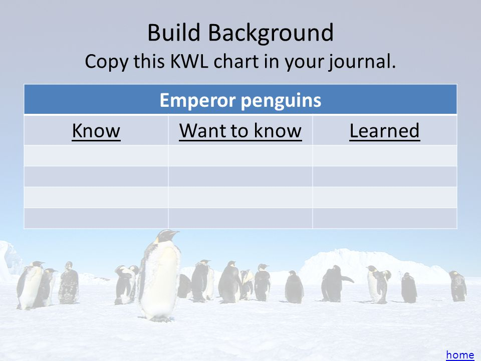 Build Background Copy this KWL chart in your journal.