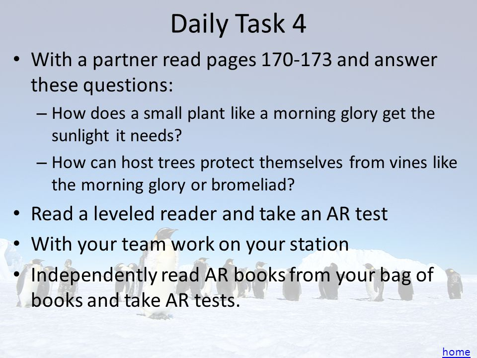 Daily Task 4 With a partner read pages 170-173 and answer these questions: How does a small plant like a morning glory get the sunlight it needs