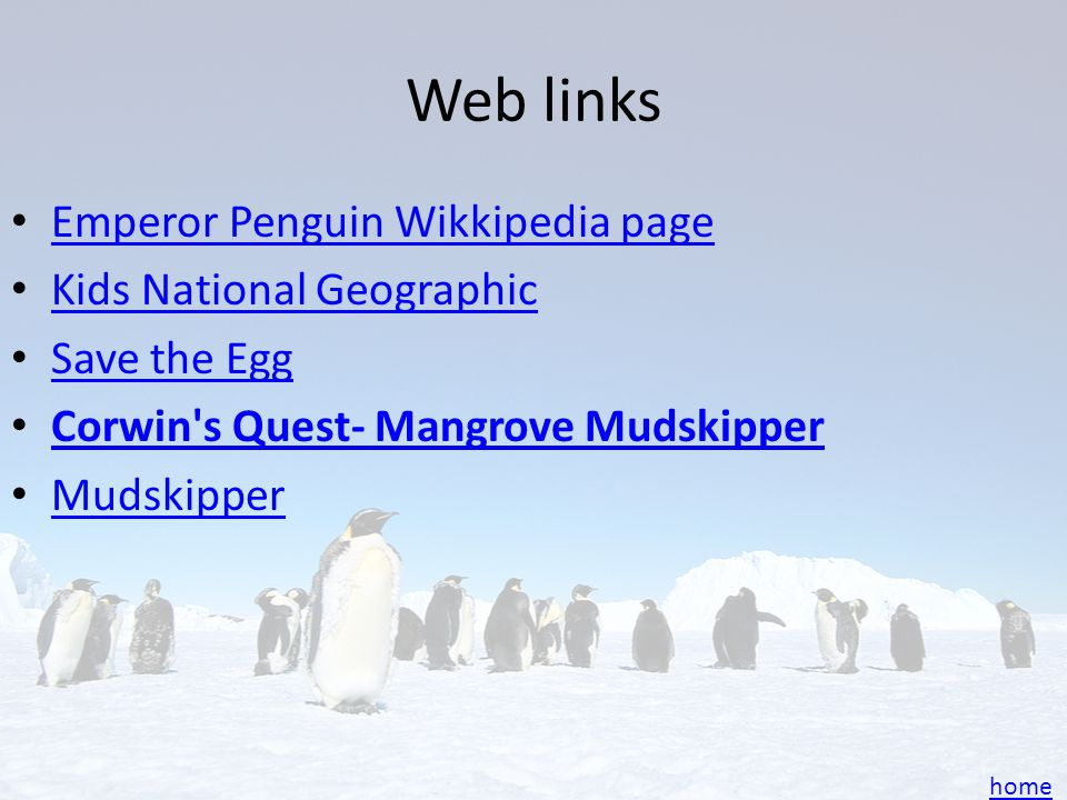 Web links Emperor Penguin Wikkipedia page Kids National Geographic