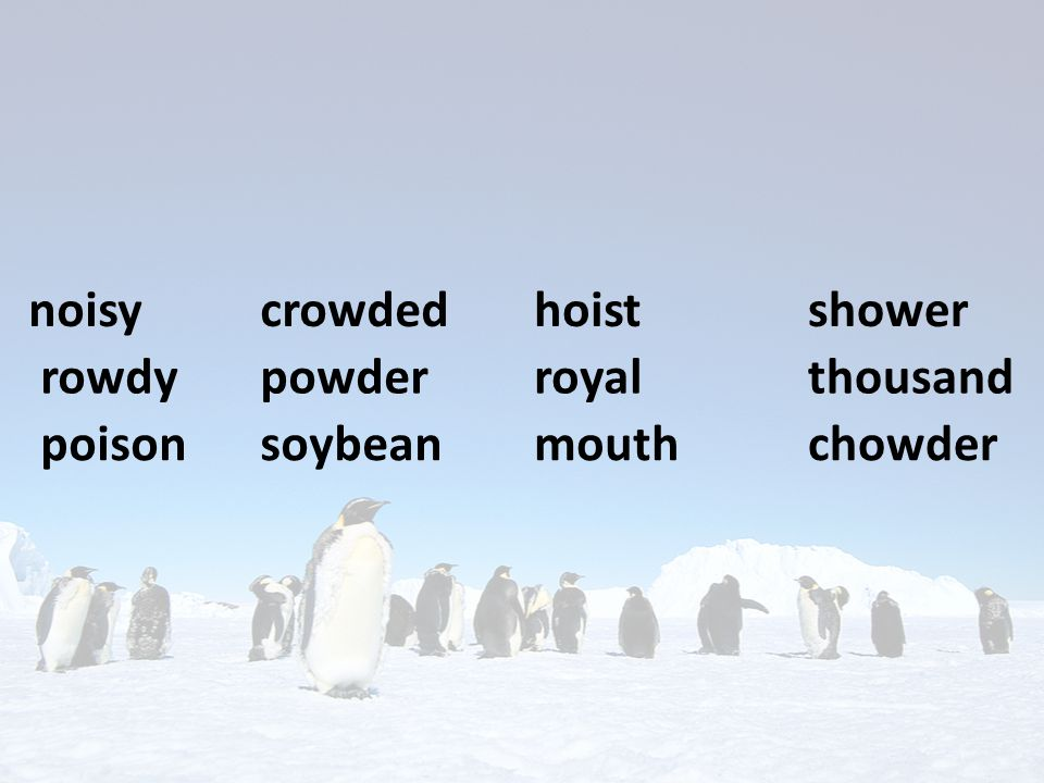 noisy crowded hoist shower rowdy powder royal thousand poison soybean mouth chowder