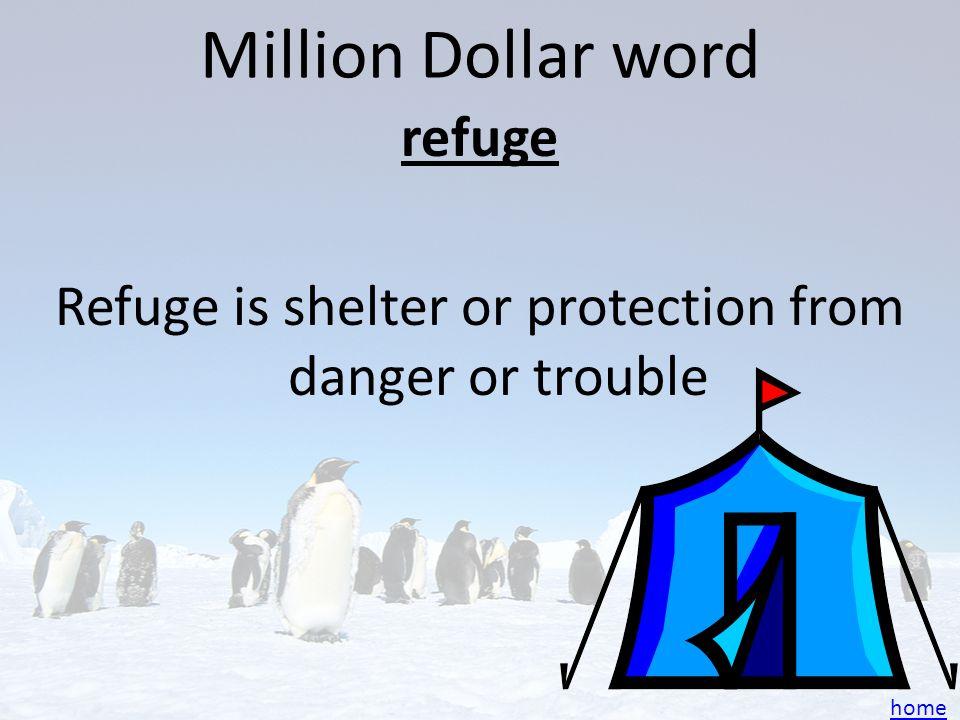 refuge Refuge is shelter or protection from danger or trouble
