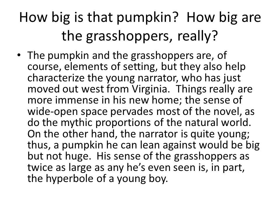 How big is that pumpkin How big are the grasshoppers, really