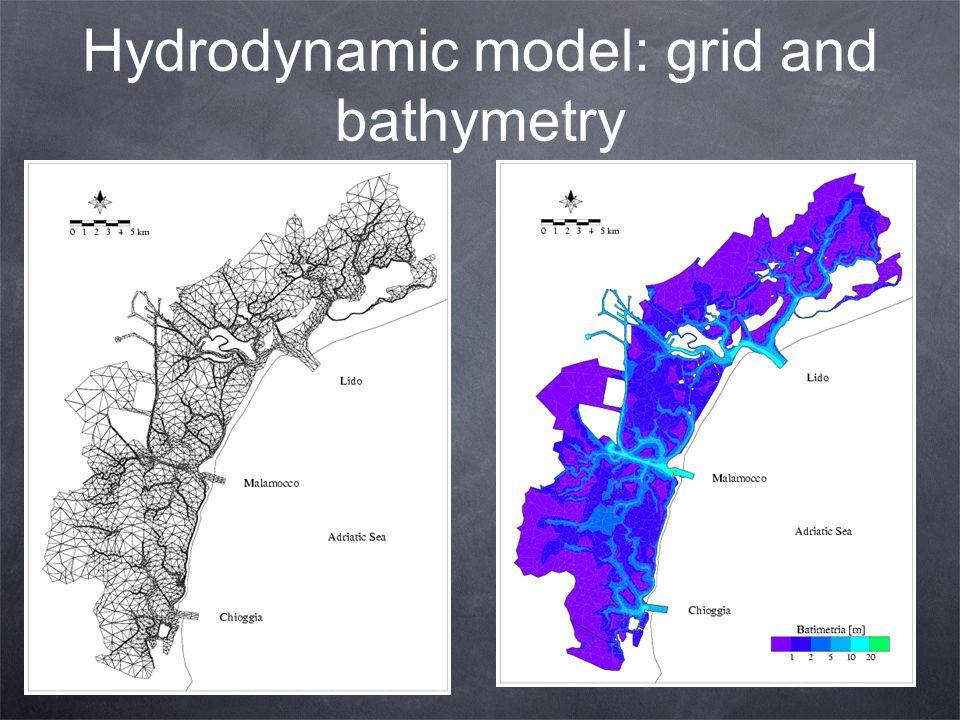 Hydrodynamic model: grid and bathymetry