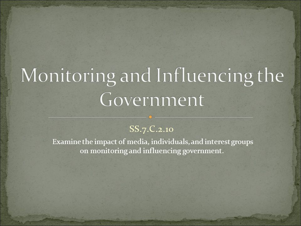 Monitoring and Influencing the Government
