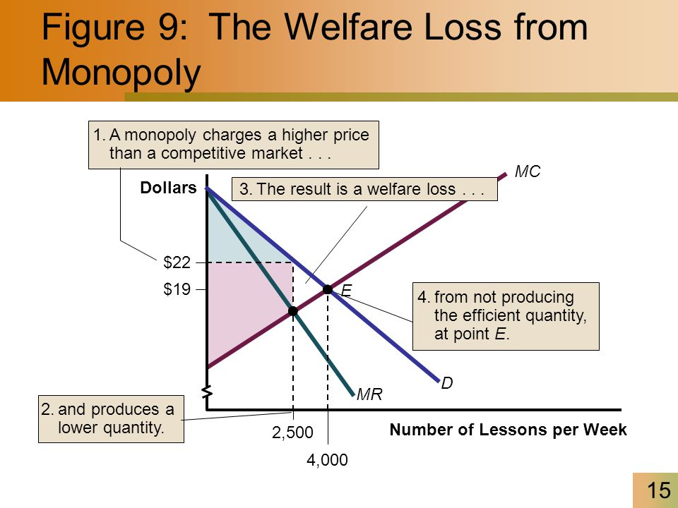 Figure 9: The Welfare Loss from Monopoly