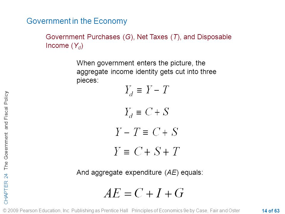 Government in the Economy
