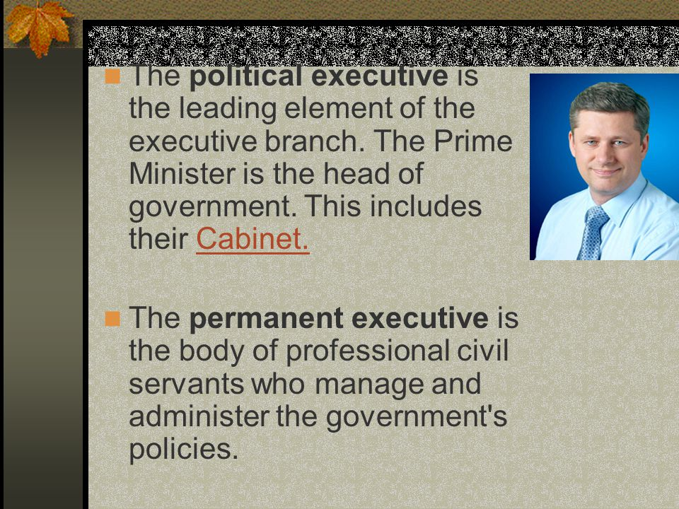 The political executive is the leading element of the executive branch