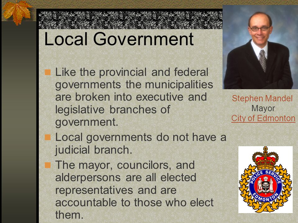 Local Government Like the provincial and federal governments the municipalities are broken into executive and legislative branches of government.