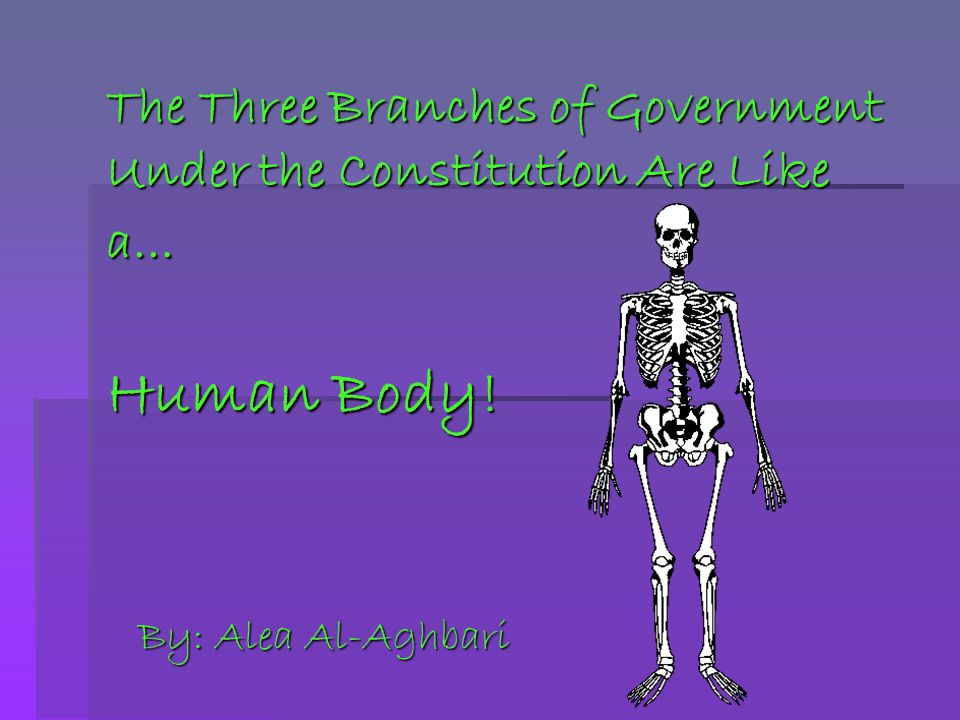 The Three Branches of Government Under the Constitution Are Like a… Human Body!