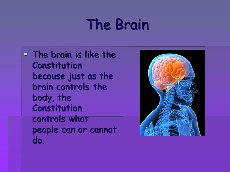 The Brain The brain is like the Constitution because just as the brain controls the body, the Constitution controls what people can or cannot do.