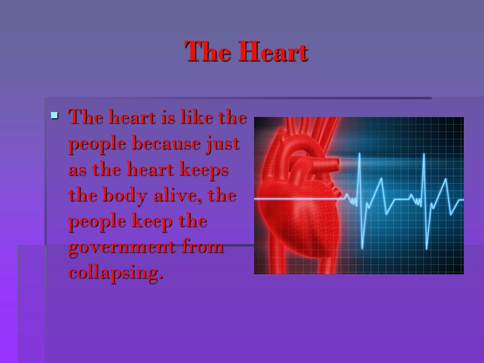 The Heart The heart is like the people because just as the heart keeps the body alive, the people keep the government from collapsing.