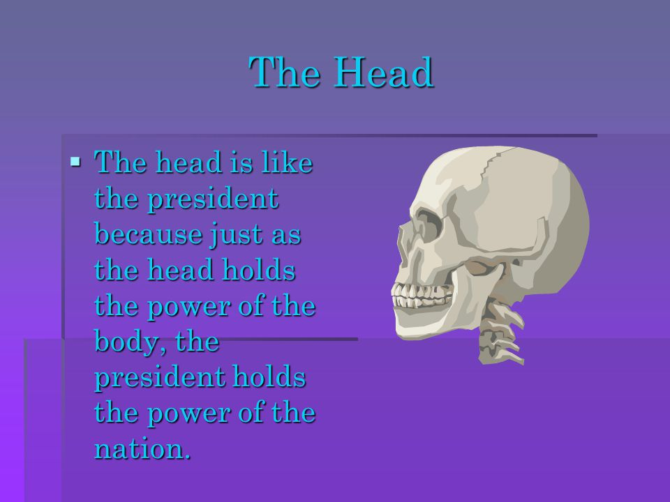 The Head The head is like the president because just as the head holds the power of the body, the president holds the power of the nation.