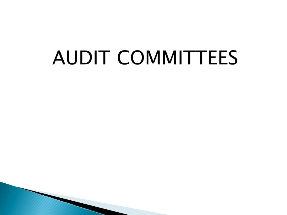 AUDIT COMMITTEES