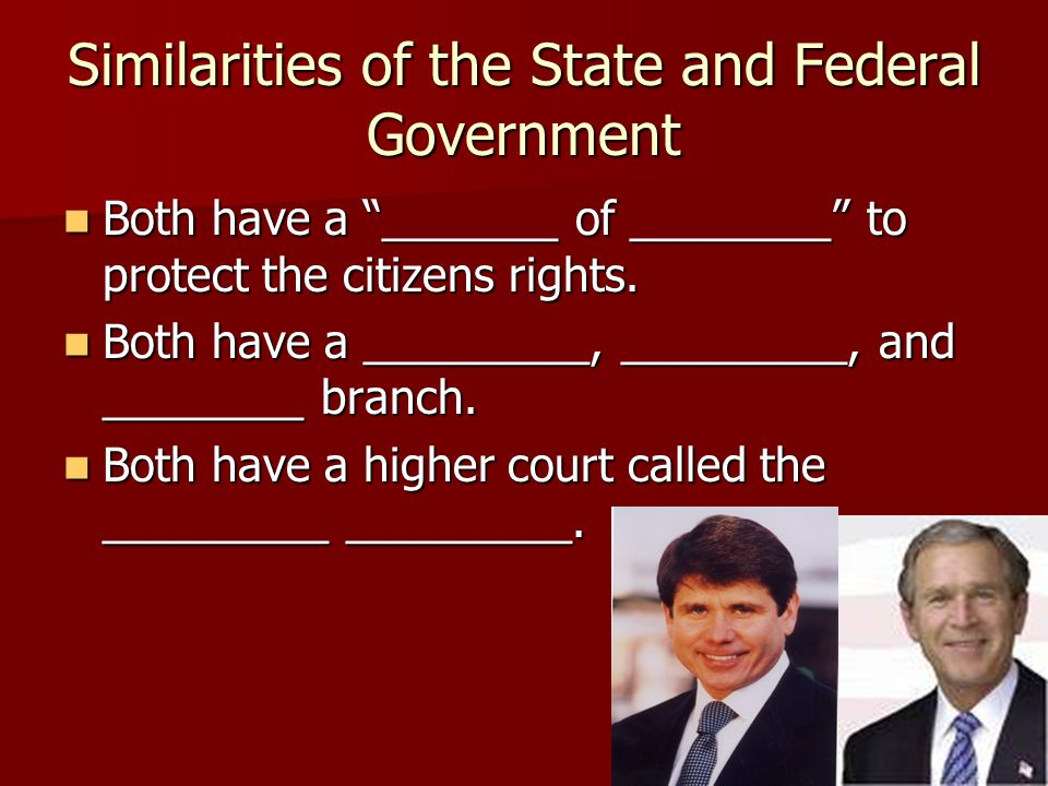 Similarities of the State and Federal Government