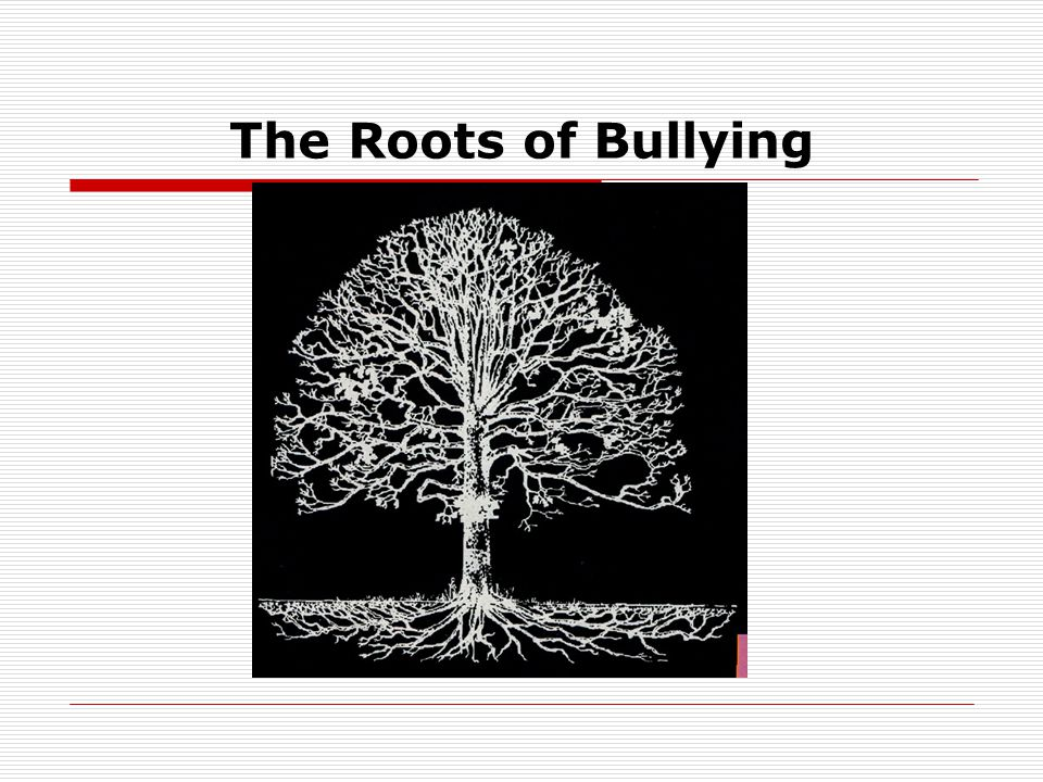 The Roots of Bullying
