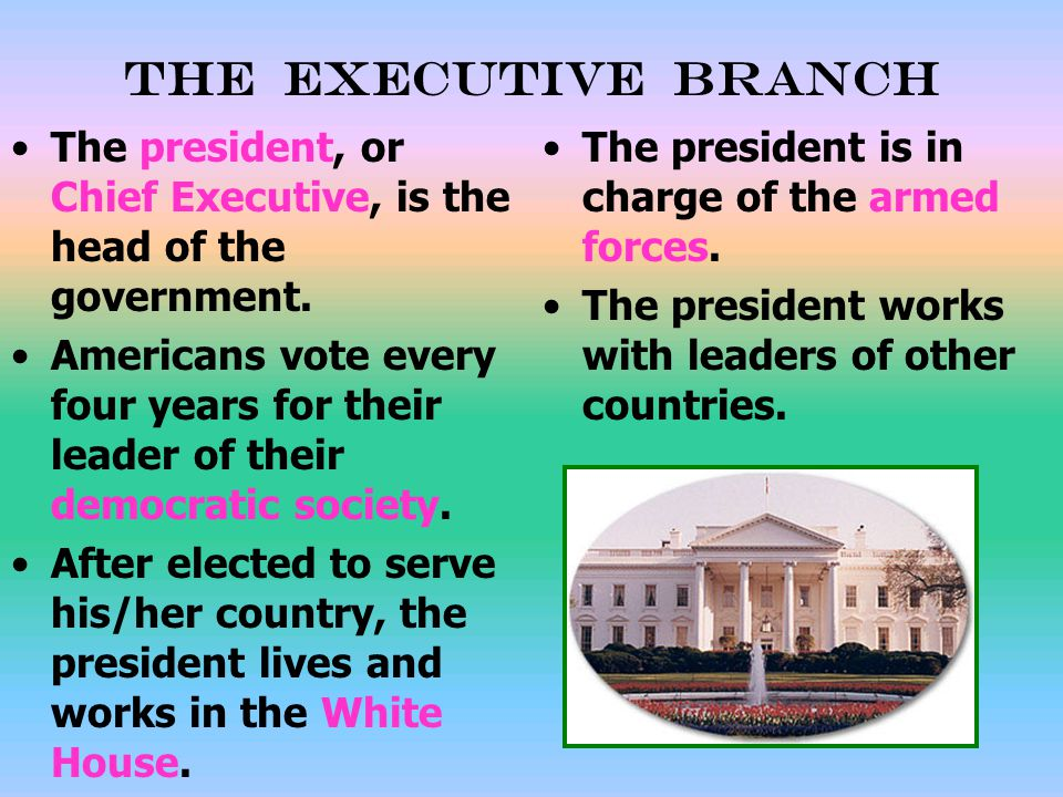 The Executive Branch The president, or Chief Executive, is the head of the government.