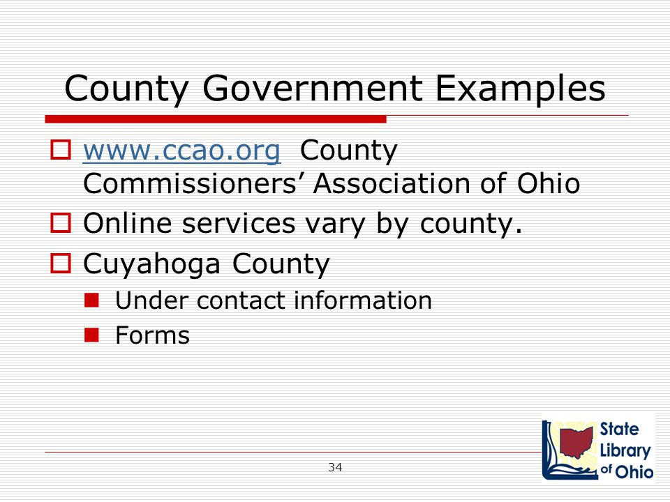 County Government Examples