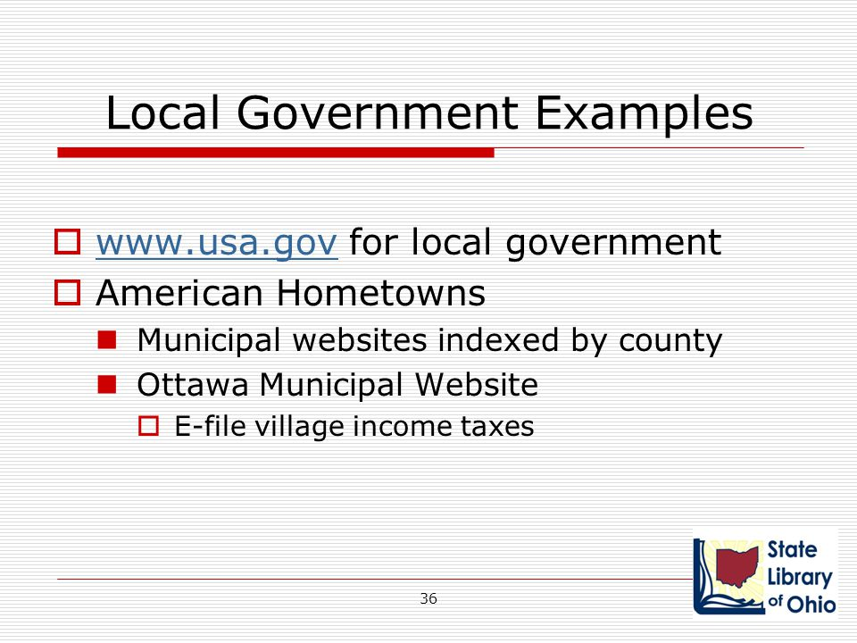 Local Government Examples