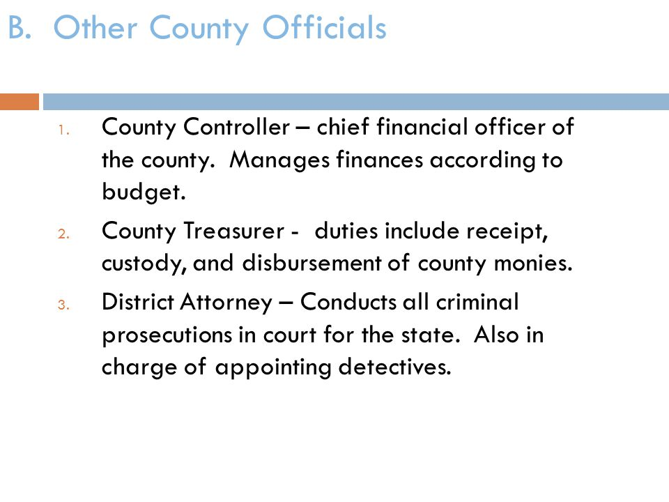 B. Other County Officials