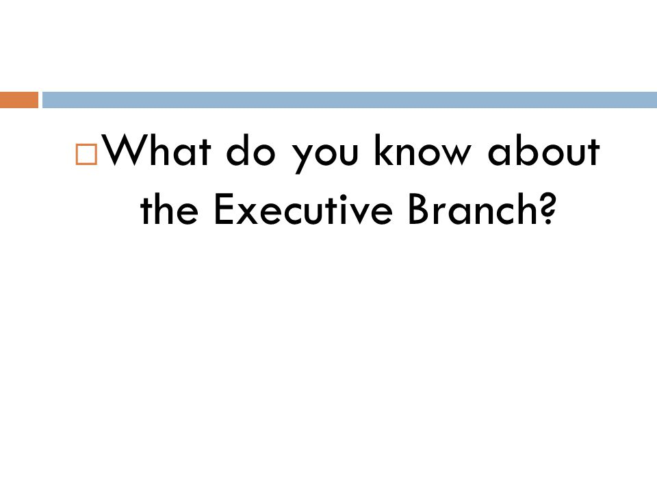 What do you know about the Executive Branch