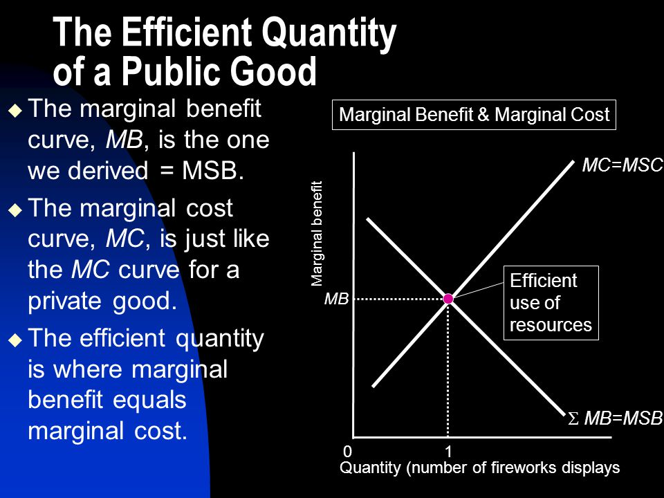 The Efficient Quantity of a Public Good
