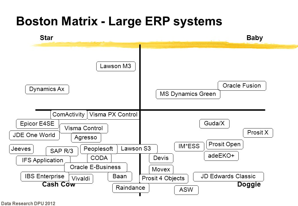 Boston Matrix - Large ERP systems