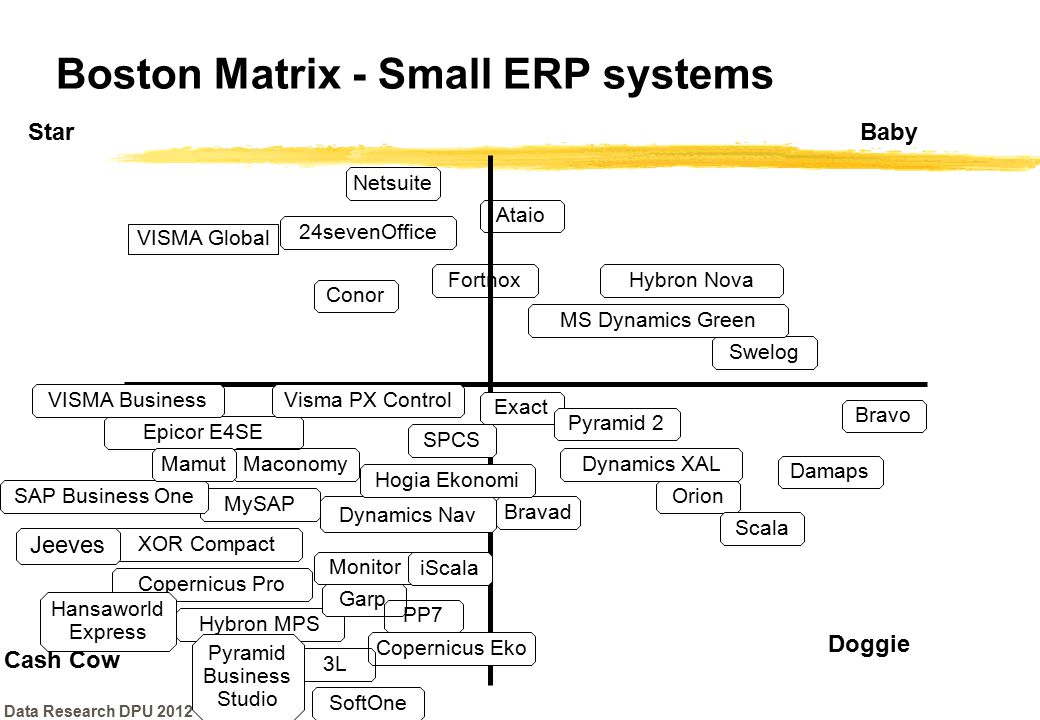 Boston Matrix - Small ERP systems