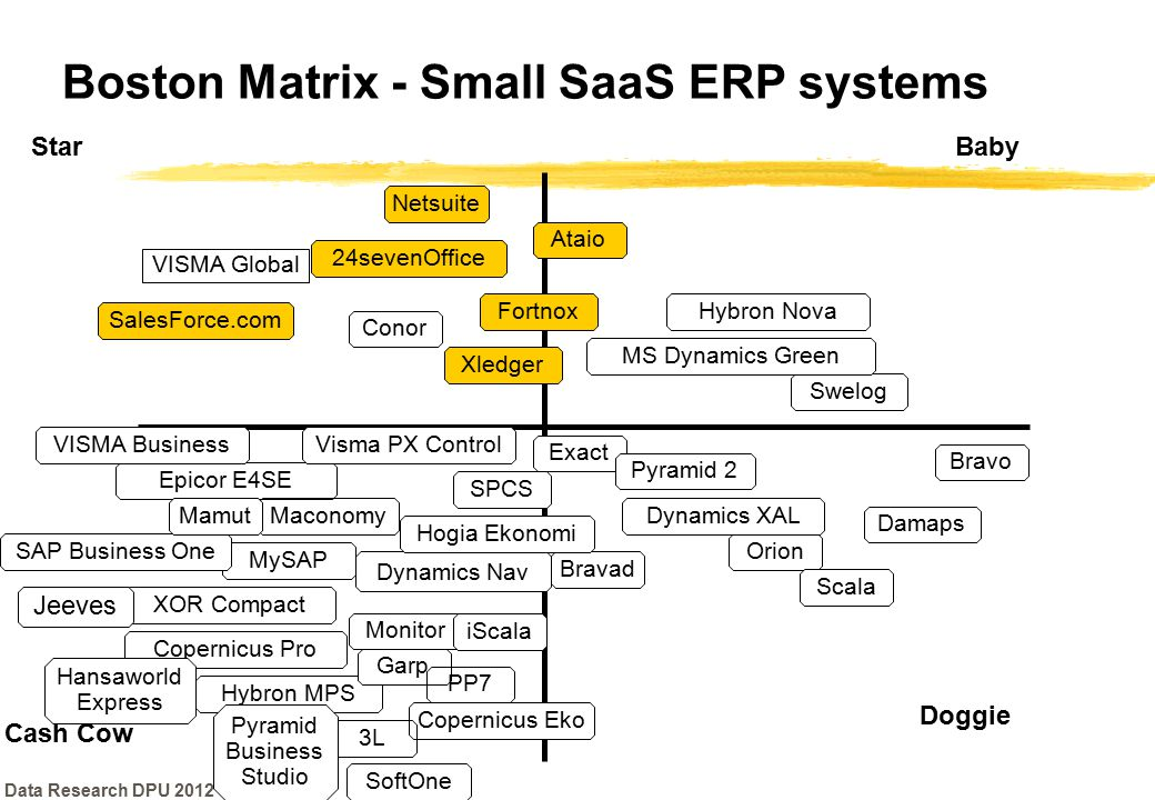 Boston Matrix - Small SaaS ERP systems
