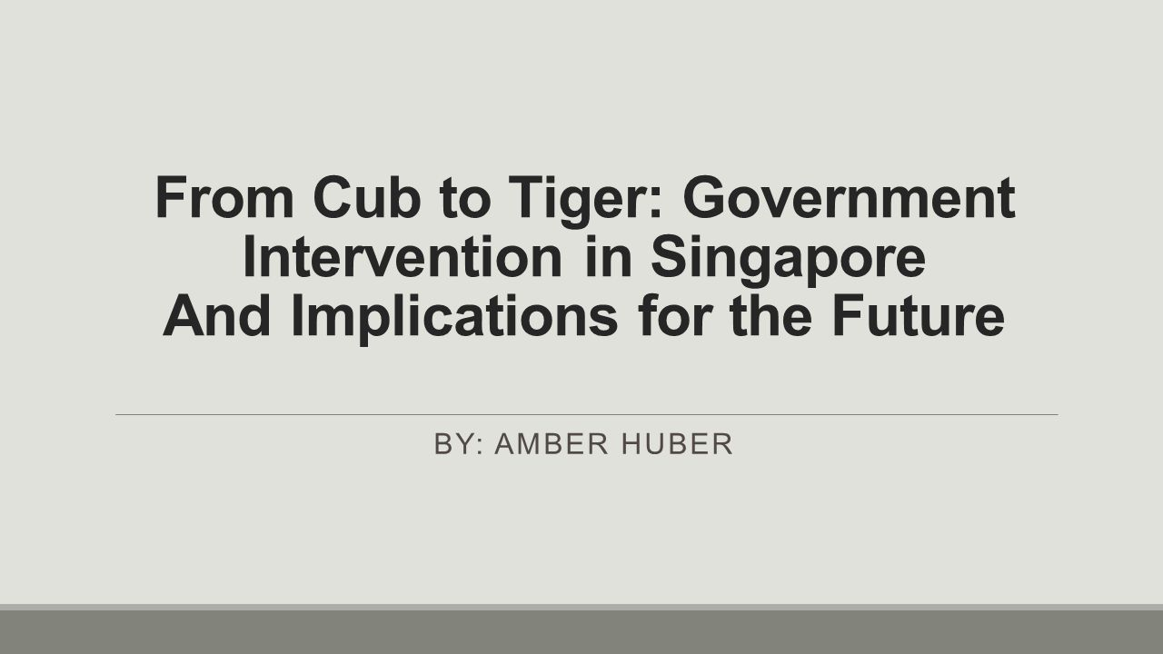 From Cub to Tiger: Government Intervention in Singapore And Implications for the Future