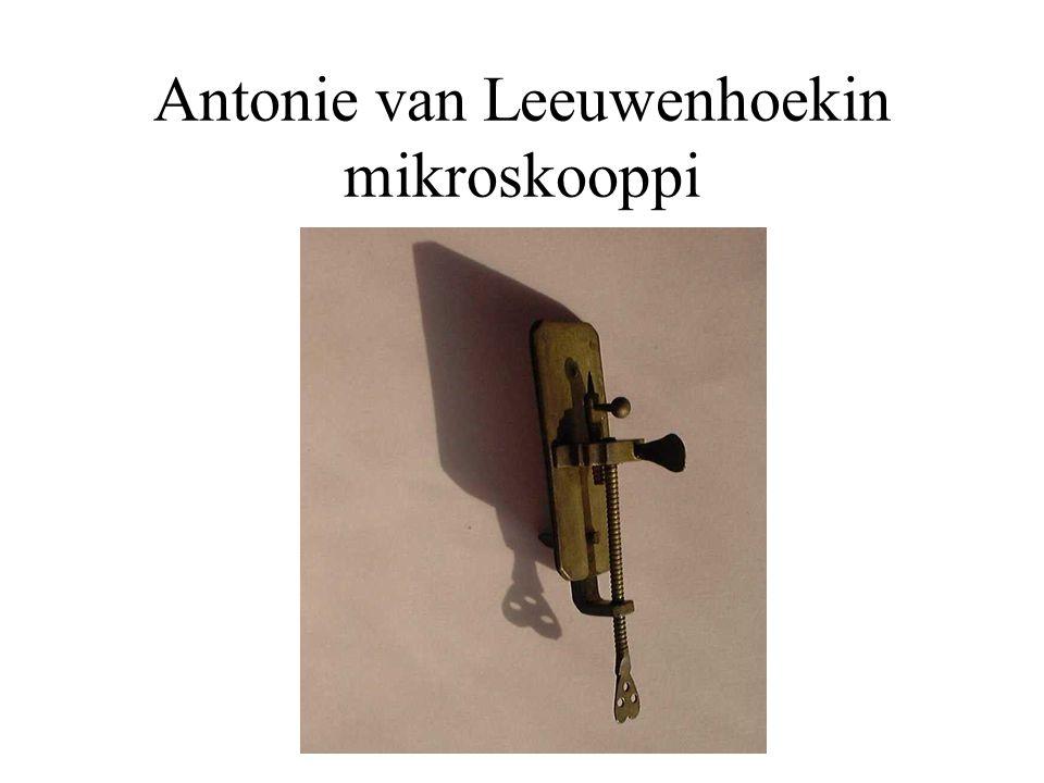 Antonie van Leeuwenhoekin mikroskooppi