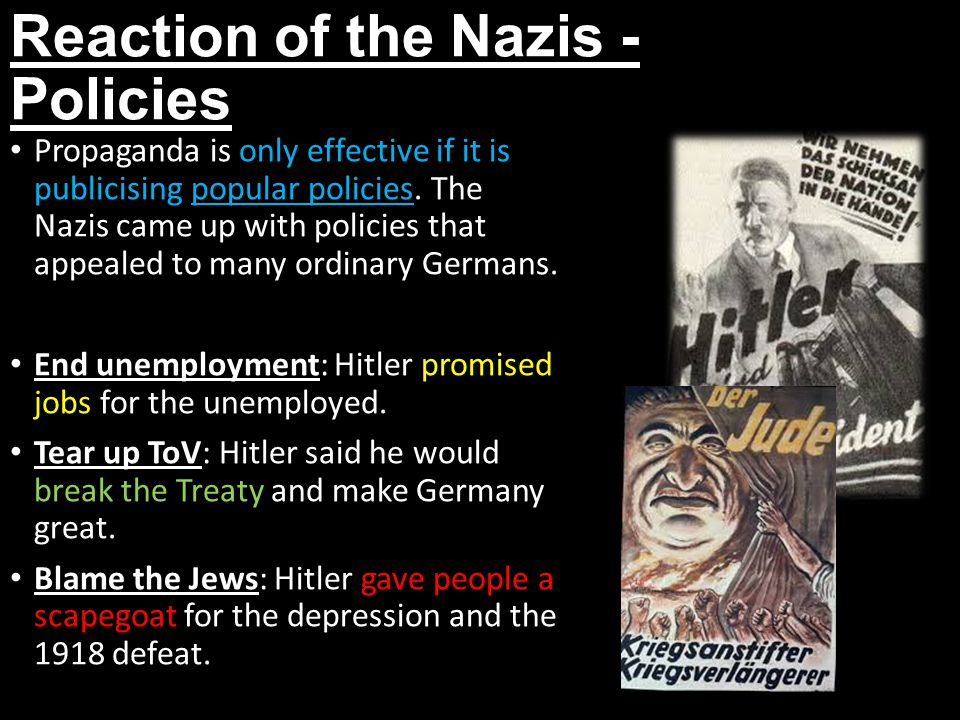 Reaction of the Nazis - Policies