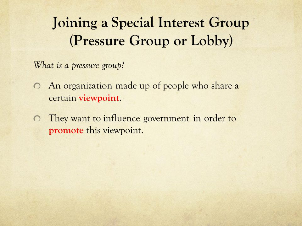 Joining a Special Interest Group (Pressure Group or Lobby)